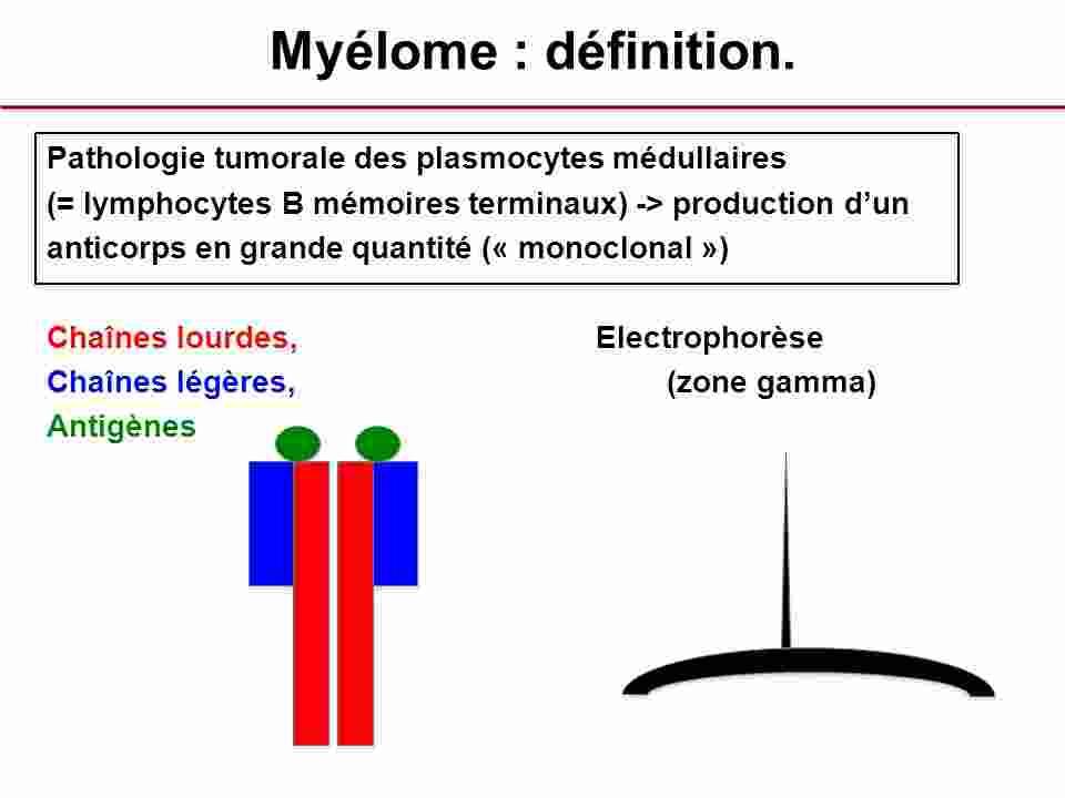 illus-myelome
